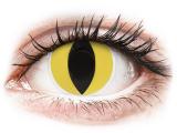 Alensa.ee - Kontaktläätsed - ColourVUE Crazy Lens - Cat Eye - 0-tugevusega
