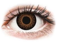 Alensa.ee - Kontaktläätsed - ColourVUE Eyelush Brown - 0-tugevusega